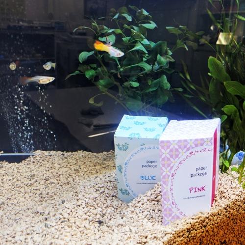 環境に優しい紙「ストーンペーパー」で箱を作りました!「省プラスチック」